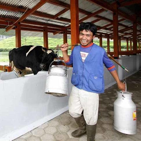 Bauer mit frischer Milch